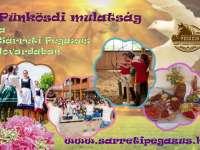 Jöjjön és töltsön velünk egy kellemes Pünkösdi napot, ahol színes programokkal, kirakodóvásárra, kézműveskedéssel és magyaros ételekkel várjuk.